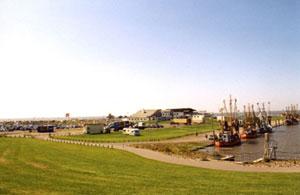 Hafen in Dorum-Neufeld mit Kuttern und Nationalpark-Haus
