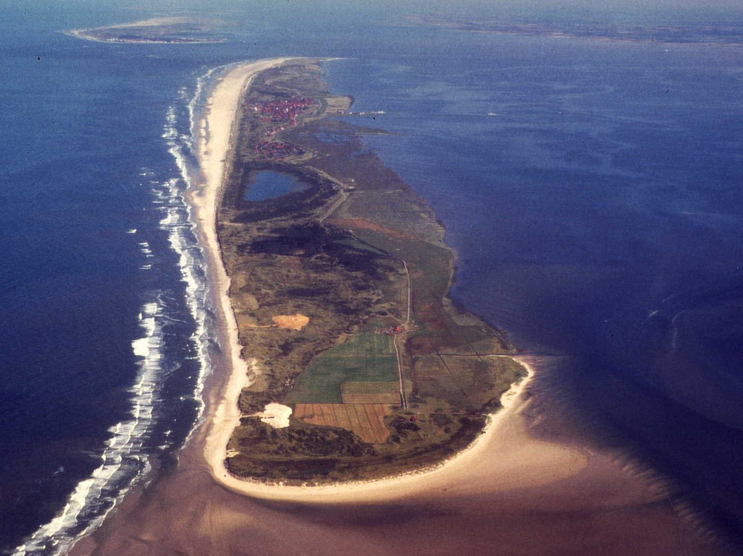 Naturkundliche Inselquerung Juister Lebensraume Haben